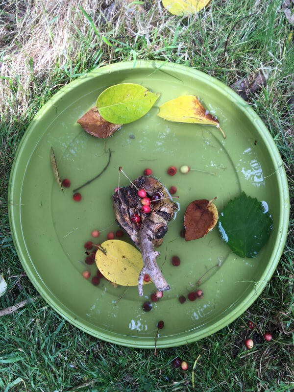 Creative ideas for Under 5's - Nature Soup
